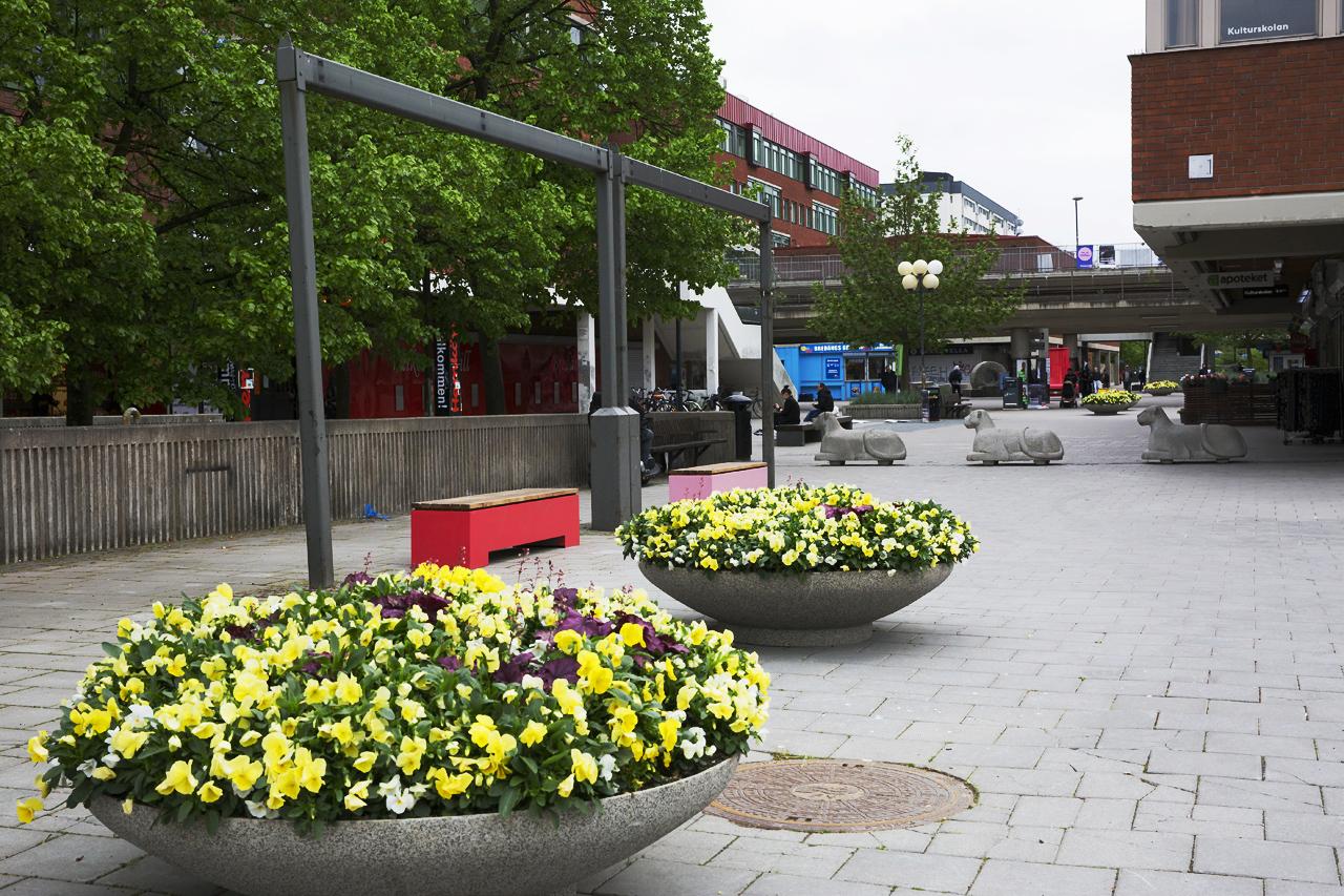 Bredäng sommartorg 2019 Bänkar och blommor Bredäng